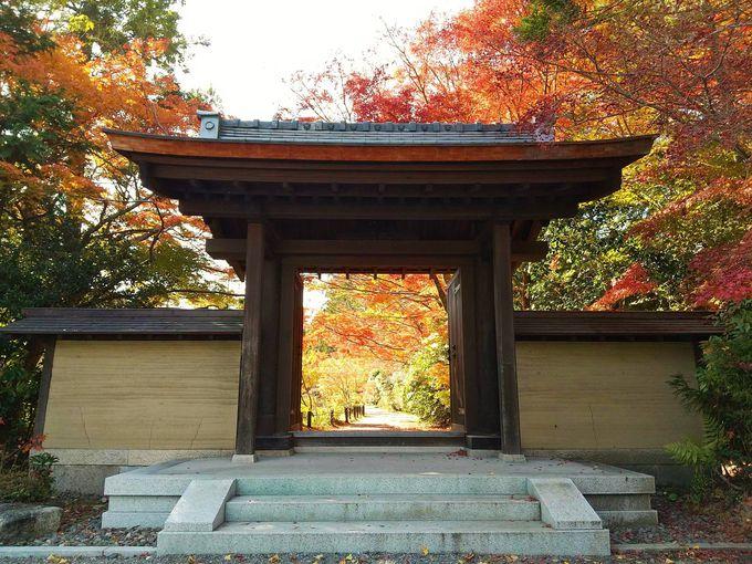紅葉もおすすめ!奈良・柳生街道の名刹「円成寺」で国宝巡り