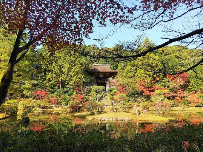紅葉の季節、円成寺の庭園は絵に描いたように美しい