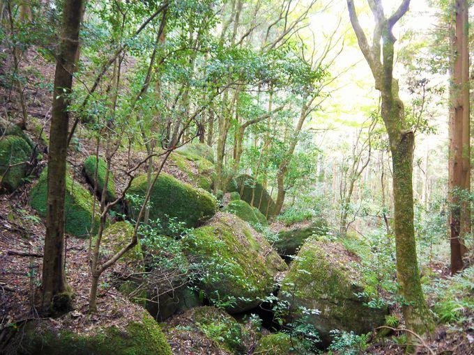ここは古来から巨石・巨岩信仰のあった神秘的な聖域