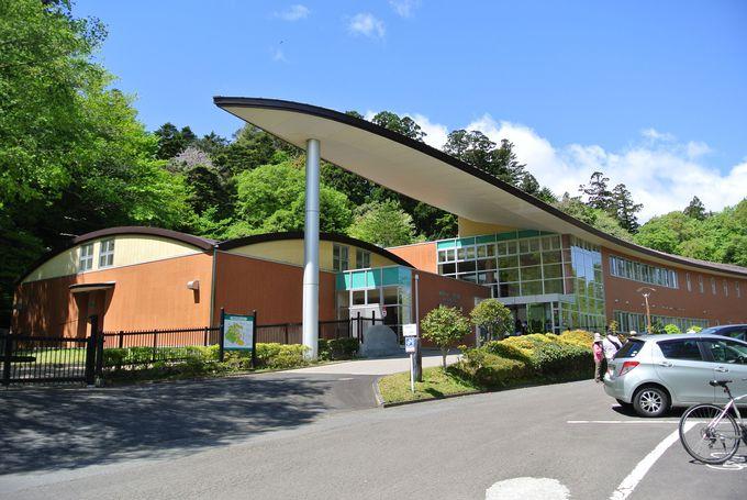 青葉山周辺でちょっと知的なミュージアムめぐり
