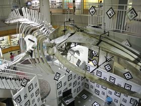 仙台・青葉山周辺でちょっと知的なミュージアムめぐり!