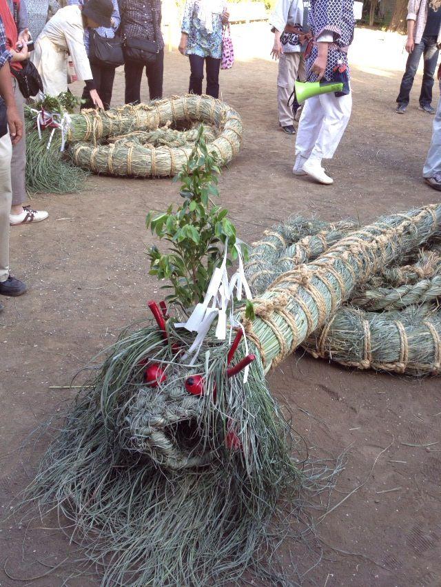 奇祭!全長20mの蛇体が町を練り歩く 横浜市・蛇も蚊も祭り