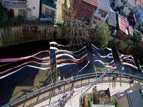 染物が町を埋め尽くす!新宿区「染の小道」で日本の伝統文化を堪能しよう
