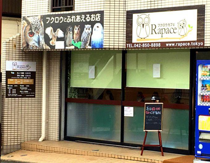 JR横浜線東口(ターミナル口)から徒歩7分
