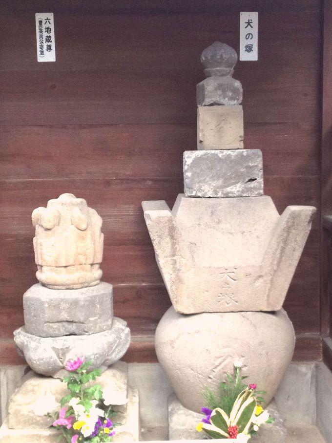 羽犬の墓も残されている