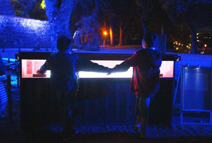 誰かと手をつないで体感する光と音の演出
