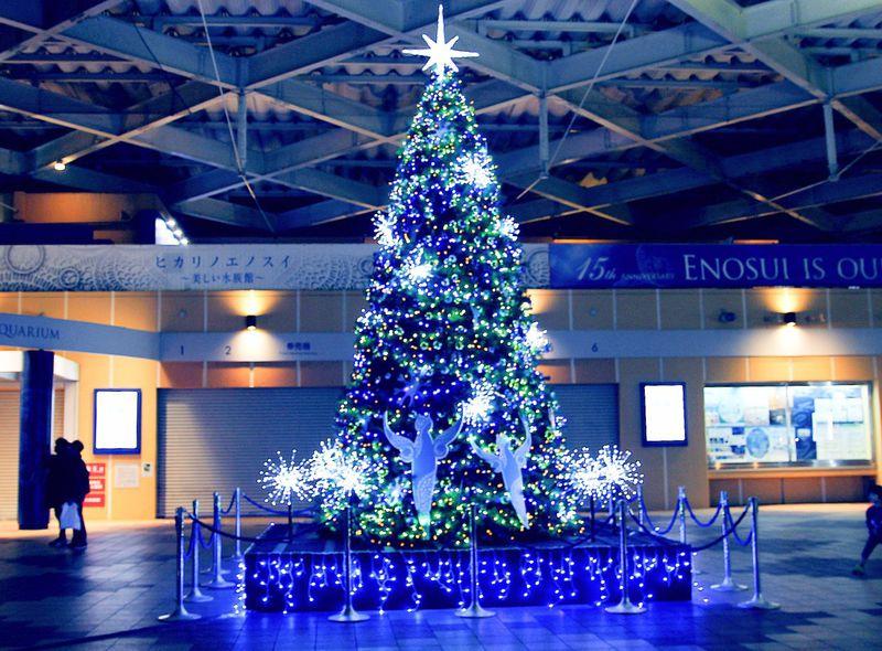 神奈川県・新江ノ島水族館「ヒカリノエノスイfinal」でクリスマス