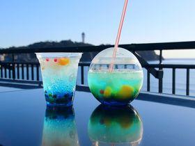 SNS映えも確実!新江ノ島水族館のカフェの歩き方