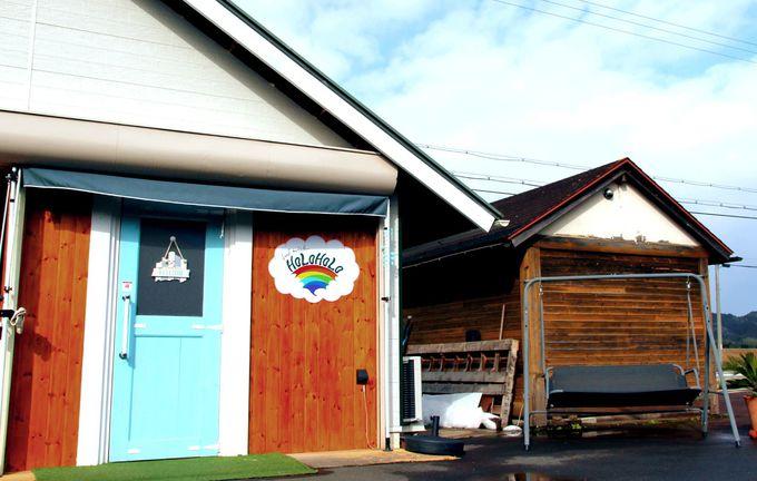 週末のみオープン、大江町のおすすめカフェ「HOLOHOLO」