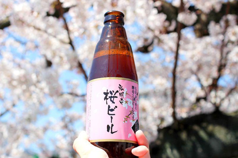 横浜・大岡川の桜並木と「弘明寺桜ビール」を楽しもう