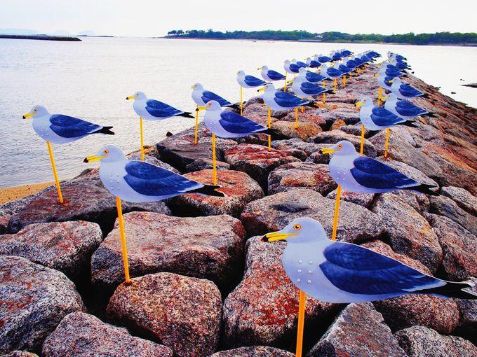 グルメの「日間賀島」とアートな「佐久島」