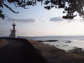 のんびりと散策!三河湾「佐久島」の自然と文化に癒される旅