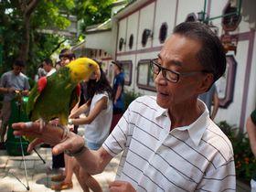 絶対おすすめ!「鳥!花!金魚!」香港の個性的な市場街を散策