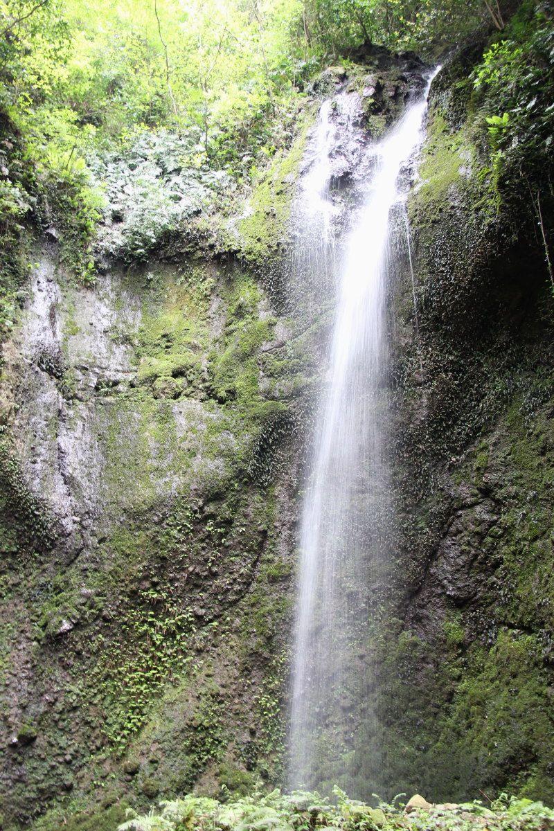 「癒し」のひとつは8,000坪の敷地を流れる川と滝!