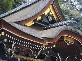 奈良・山辺の道でパワースポットを制す!!最古の神社三社へ参拝