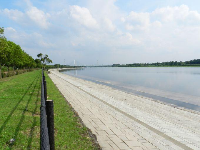 南埼玉有数の広〜い湖、彩湖をぐるりと一周してみよう