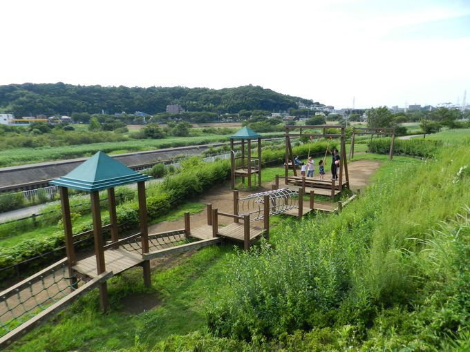 緑豊かな園内に設置される、多彩なコンテンツ