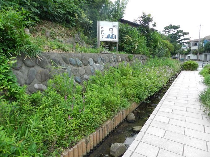 公園から最寄駅への経路には、涼しげな小川のせせらぎが