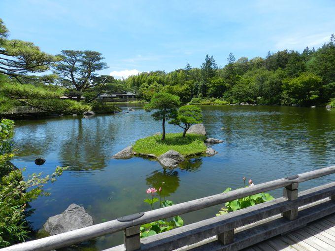コスモス景観の後は、情緒ある日本庭園でゆったりと