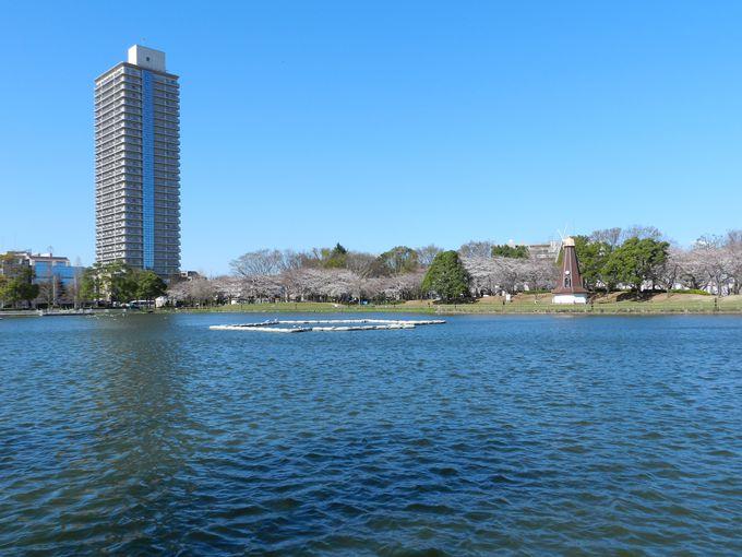 池と緑と、風車とマンションが織りなす美景観