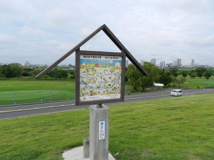 公園の向こう側は、広大な荒川の河川敷!