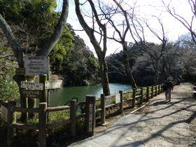 美しい冬鳥たちが訪れる鎌倉市の秘境。散在ガ池森林公園へ