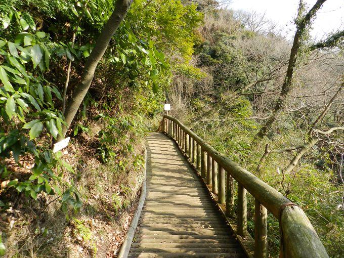 起伏の大きい園路で、ハイキング気分を堪能しよう