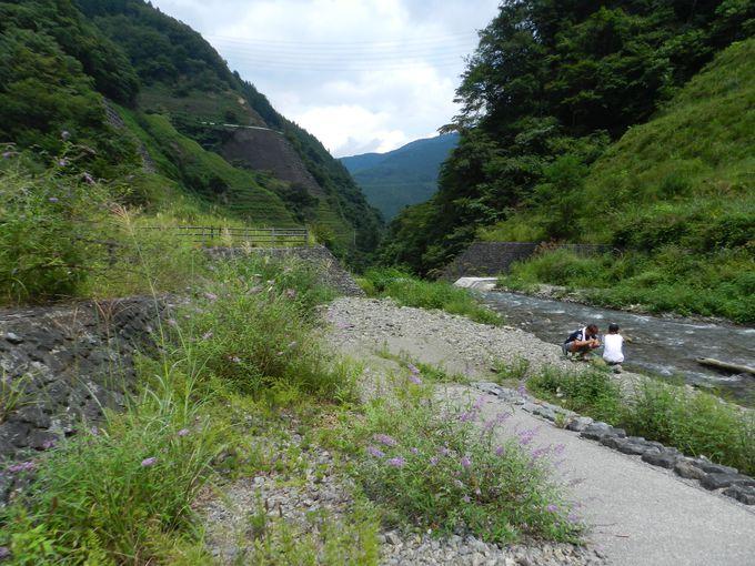 清らかな川の流れるキャンプ場「ネイチャーランド浦山」