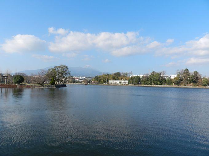 広い池をめぐり水・鳥・花と親しむ —門池公園(沼津市)—