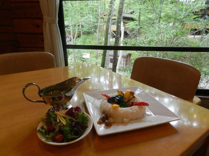 お食事は、森のレストランでゆったりと