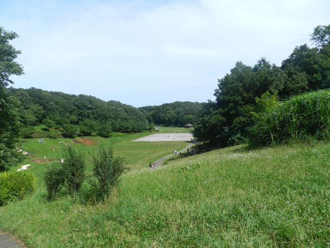 40ヘクタール以上におよぶ「陰」と「陽」の広大な緑地