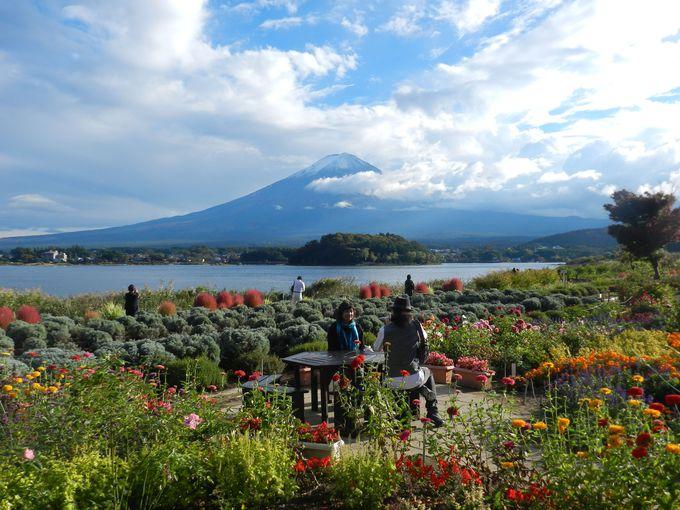 湖と富士山を望むお花畑。テーブルでゆったりと