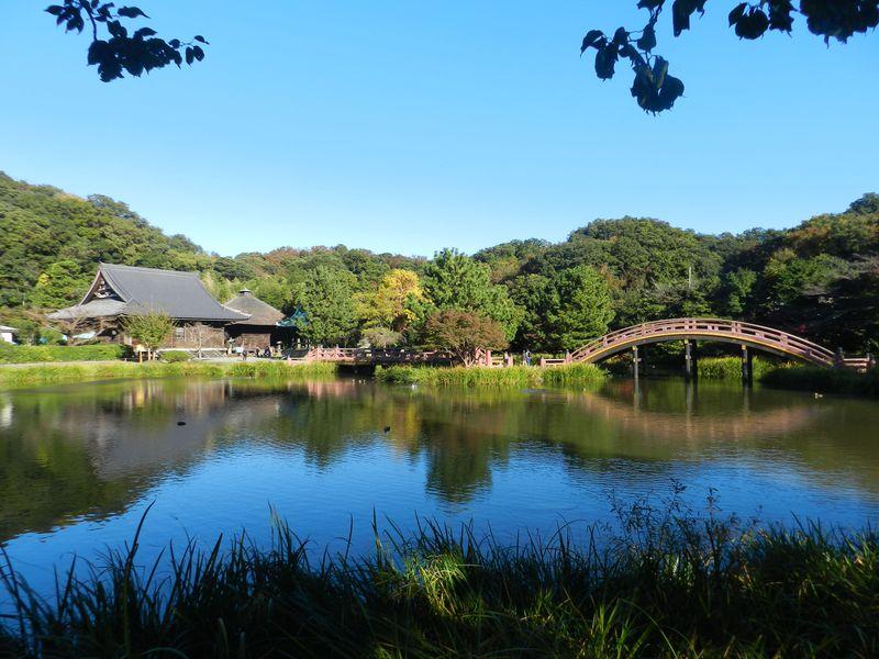 称名寺(横浜市)〜海の公園、史跡と生きものを探すプチ冒険