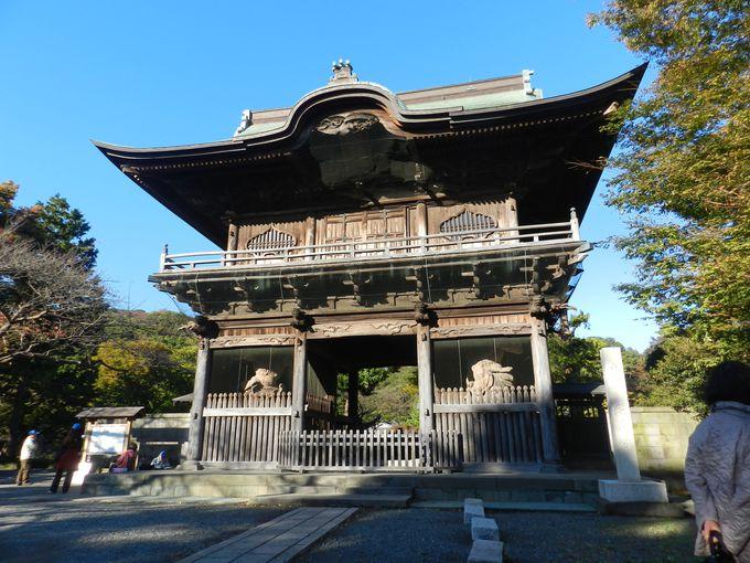 —称名寺市民の森— 史跡を巡り、文化の深みを体感