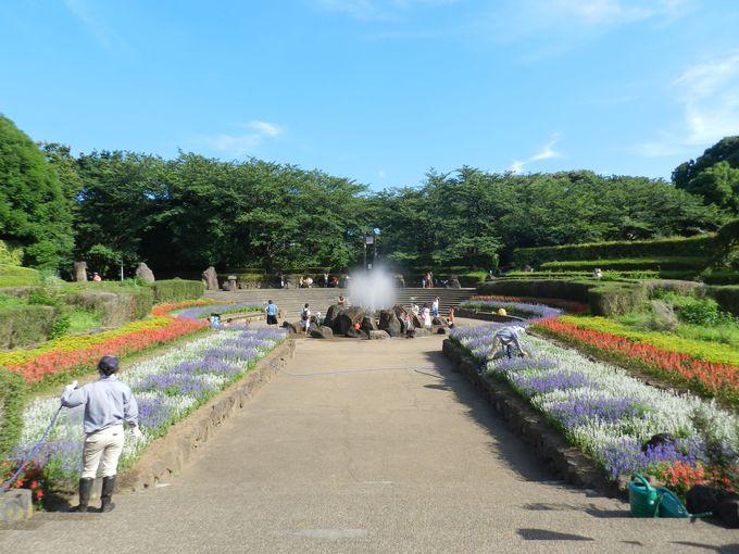 花と緑の谷戸型公園で、ゆったりと癒される