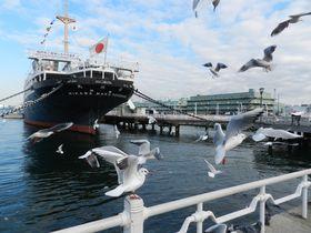 あえてクリスマスや夜景を無視して、冬の横浜ベイエリア巡り