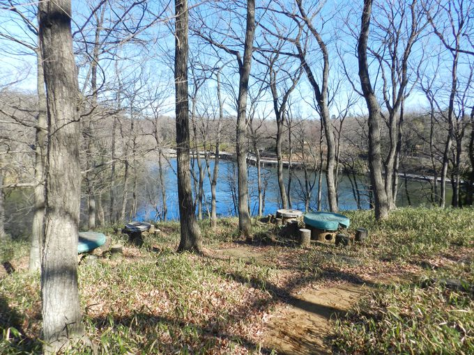 広大な国営公園には、森あり、池あり、広場あり!