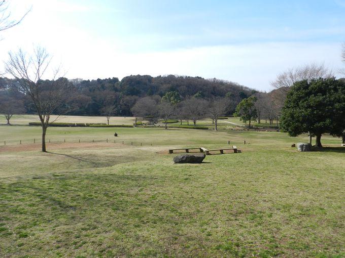 開けた空の下で、のんびりと過ごせる公園です