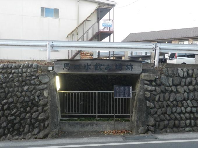 羽村堰周辺にちりばめられた史跡から「歴史」を辿る
