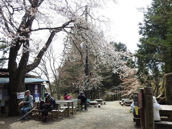 日帰りでたっぷりと楽しめる、東京の山歩きへ!
