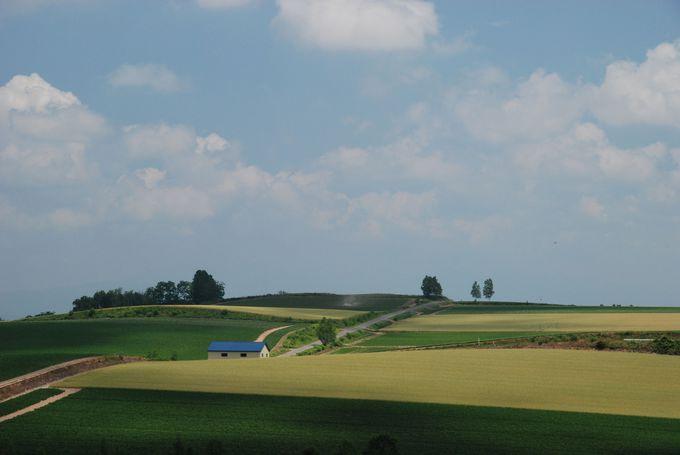 のびのびと雄大な風景!ルベシベ地区を巡る