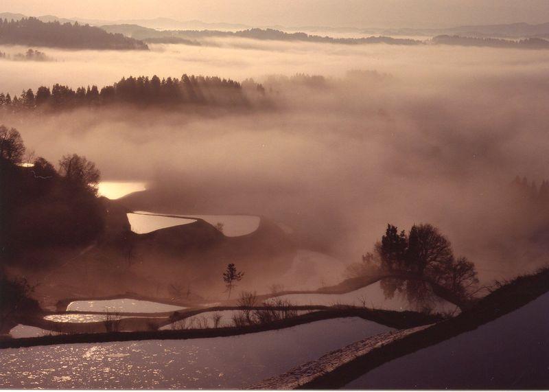 今こそ「里山×現代アート」新潟・越後妻有を巡る旅