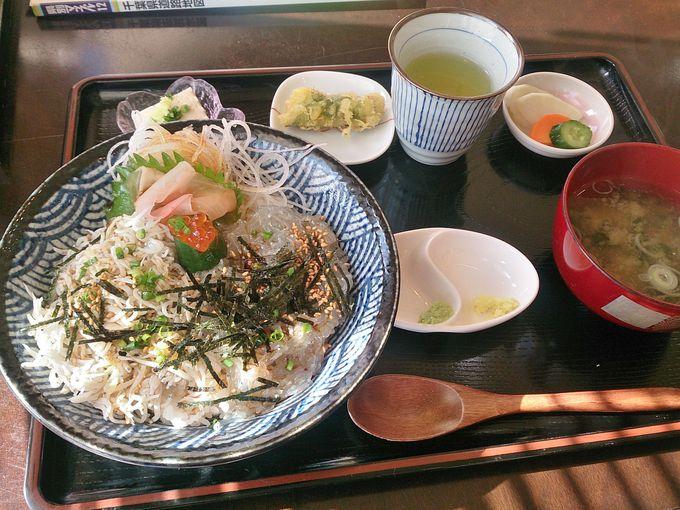 飯岡漁港で獲れた新鮮な魚介料理、漁師さんのお店「しらす亭」でランチ