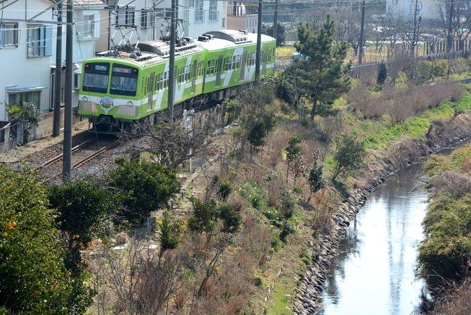 畑や小川が残るのどかな風景のなか、緑色の2両編成が走る。