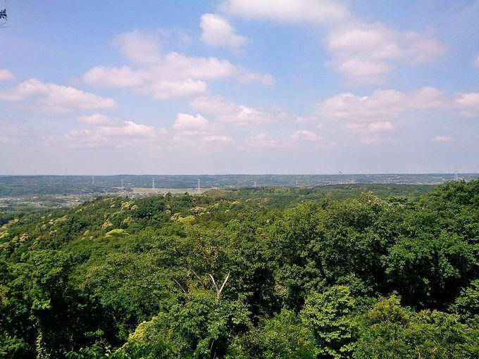 山頂では、ぐるり一都十県の眺望を楽しむ!