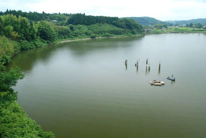 展望塔の上からは高滝湖と房総の山並みを一望。
