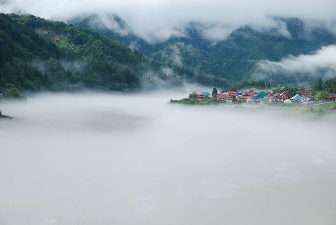 幻想的な川霧が発生!まるで集落が浮かんでるよう。