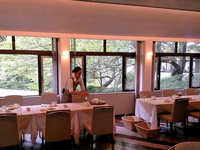 窓からの緑が美しい!おしゃれなレストラン「ベルヴェデーレ」