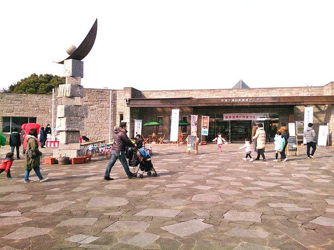 日本で数少ないラムサール条約登録湿地