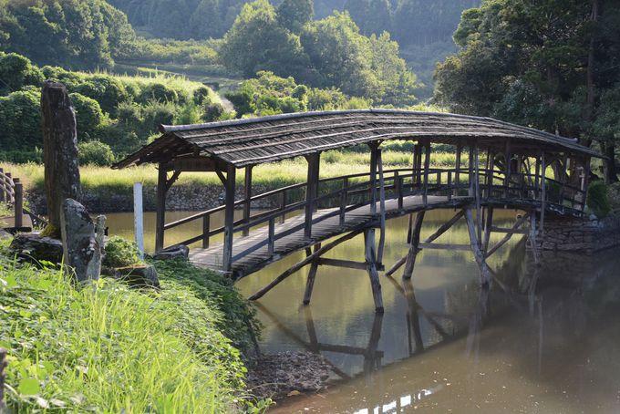 アーチ形の姿が美しい!神社の参道でもある「太鼓橋」